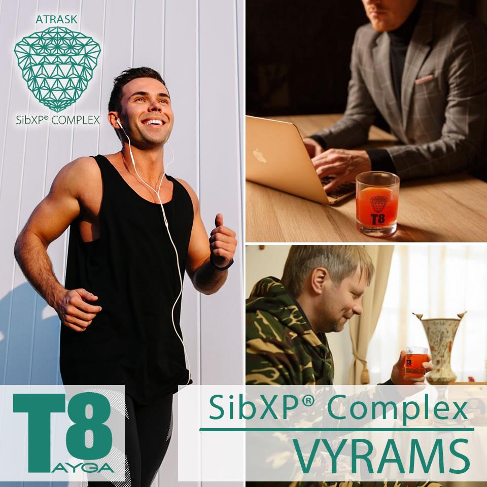 Tayga8 SibXP Vyrams
