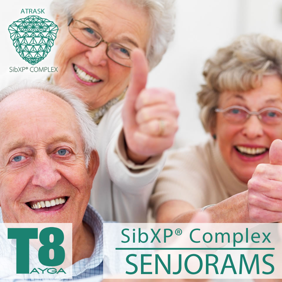 Tayga8 SibXP Senjorams